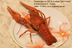Вареные раки от 100 гр.