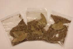 Приправа семена укропа (3 шт)